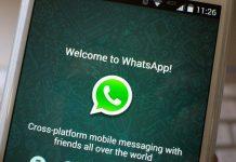 روش بررسی وضعیت پیام های ارسالی در WhatsApp اندروید,read receipts,وضعیت پیام , whatsapp,whatsapp, chech marks,اندروید,روشتک,raveshtech,دریافت پیام whatsapp