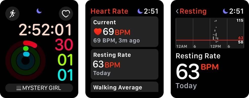 چگونه میزان ضربان قلب و میانگین پیاده روی خود را در اپل واچ ببینیم؟,روشتک,raveshtech