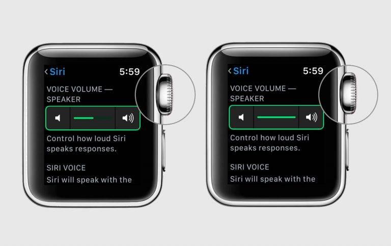 پس از آن رو به پایین اسکرول کرده و در VOICE VOLUME — SPEAKER با تاج ساعت هوشمند خود یا با جابجا کردن لغزنده یا slider آن، صدای دستیار هوشمند Apple یا همان Siri را کم یا بیش کنید.,روشتک,raveshtech