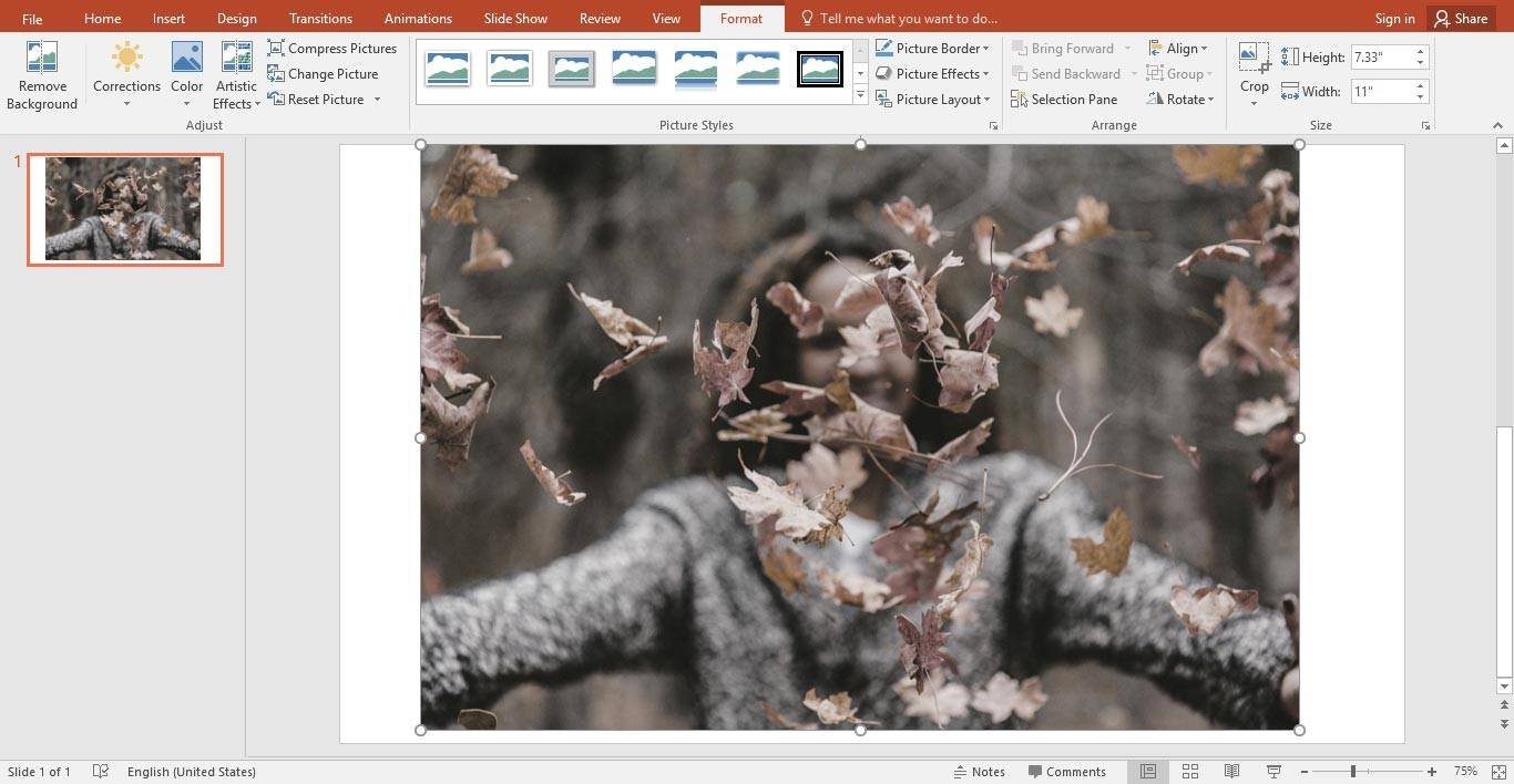 تبدیل عکس رنگی به سیاه و سفید در PowerPoint, تبدیل عکس رنگی به سیاه و سفید در پاورپوینت, عکس سیاه و سفید PowerPoint, تغییر رنگ عکس در PowerPoint, پاورپوینت, PowerPoint, روشتک,raveshtech
