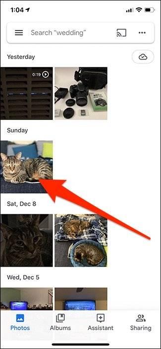 روش استفاده از ویژگی Google Lens در برنامه Google Photos,روشتک,raveshtech