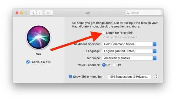 چگونه می توانیم Hey Siri را در رایانه مک خود فعال کنیم؟,روشتک,raveshtech