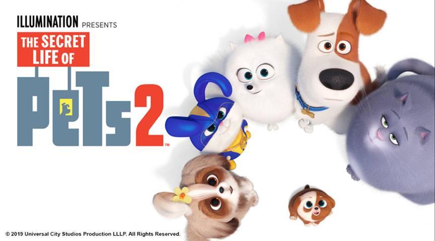 انیمیشن های برتر سال 2019 the secret life of pets