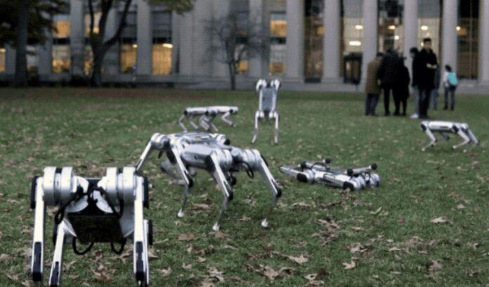 آزمایش ربات یوزچه MIT با پشتک 360 درجه