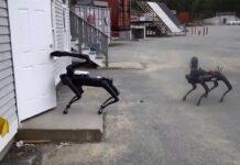 آزمایش سگ ربات SpotMini توسط پلیس ایالتی ماساچوست آمریکا