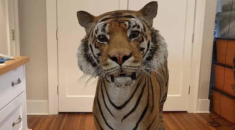 روش دیدن حیوانات سه بعدی گوگل بصورت واقعیت افزوده در اندروید و آیفون