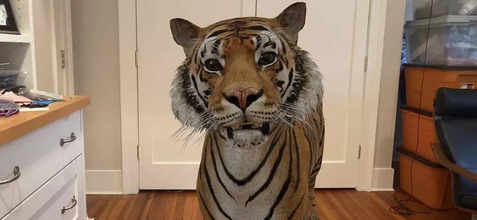 Photo of روش دیدن حیوانات سه بعدی گوگل بصورت واقعیت افزوده در اندروید و آیفون