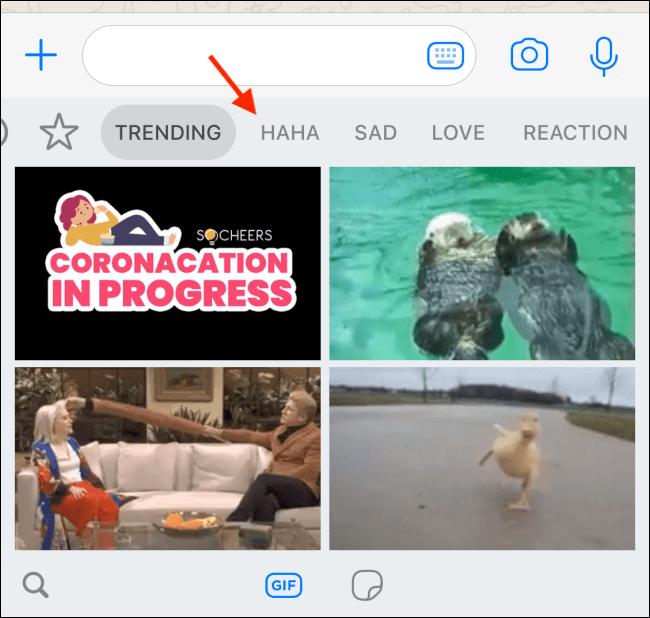 گیف های Trend واتساپ