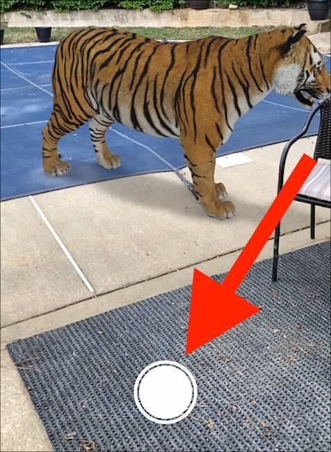 گرفتن عکس از نمایش حیوانات واقعیت افزوده گوگل