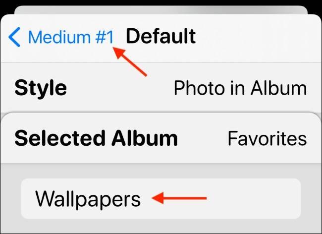 """گزینه """"Photo in Album"""""""