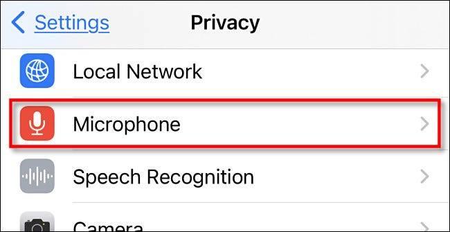 گزینه Microphone در بخش حریم خصوصی آیفون