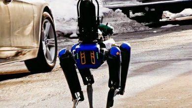بکارگیری سگ ربات بوستون داینامیک در پلیس نیویورک