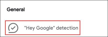 تنظیم Hey Google detection