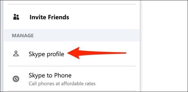 گزینه Skype Profile