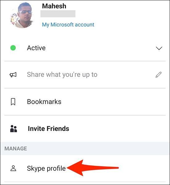 Skype Profile